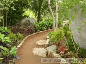 Diseños-y-botánico-2003-033-300x225