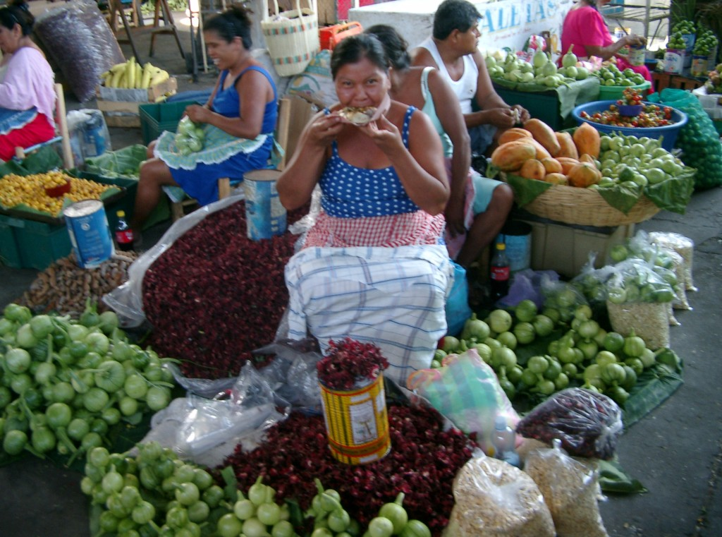 The Market, Acapulco, Tour, Guides, excursion, sighseeing, shore, trip, guide, trip, travel, agent, agency, rudy, rudi, fregoso (42)