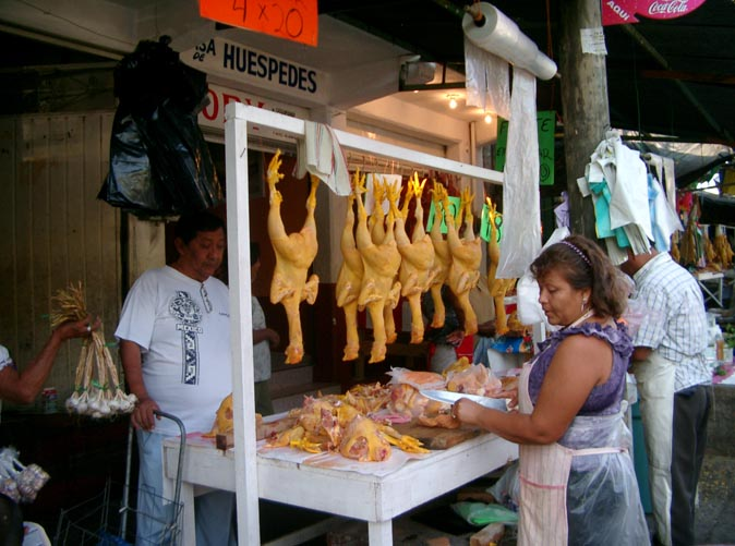 The Market, Acapulco, Tour, Guides, excursion, sighseeing, shore, trip, guide, trip, travel, agent, agency, rudy, rudi, fregoso (93)