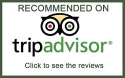 Rudy´s TourByVan Trip Advisor´s # 1 by 6th. consecutive year