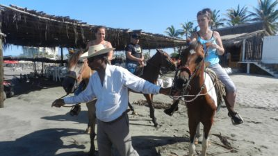 Beach Horseback Riding Baby Turtle Release with Chapel of Peace Visit from $63.99USD